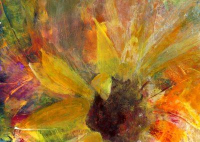 Sunflower Bursting